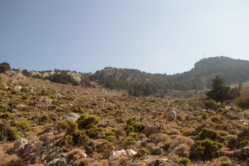 Пешком на гору Цамбики, Родос