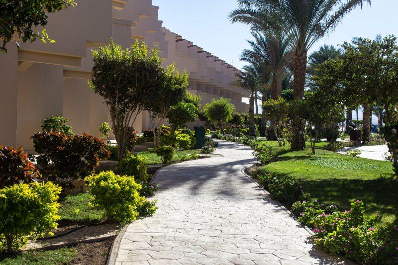 зеленая территория Pyramisa Sahl Hassheesh